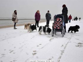 winterwandeling_2012_(11)