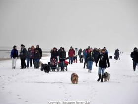 winterwandeling_2012_(12)