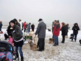 winterwandeling_2012_(15)