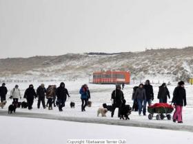 winterwandeling_2012_(5)