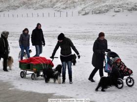 winterwandeling_2012_(7)